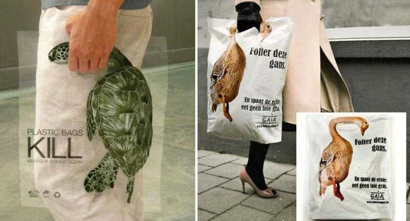 Global Action In The Interest of Animals Plastic Bags Kill