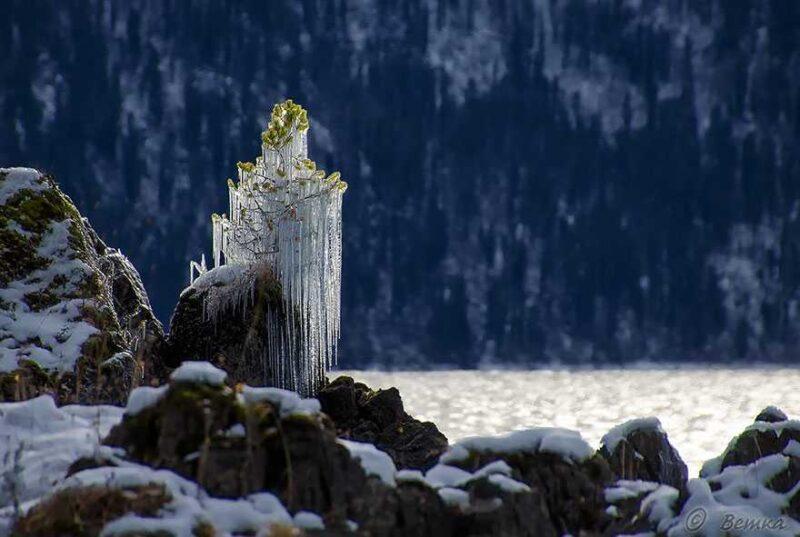 frozen-ice-art-9