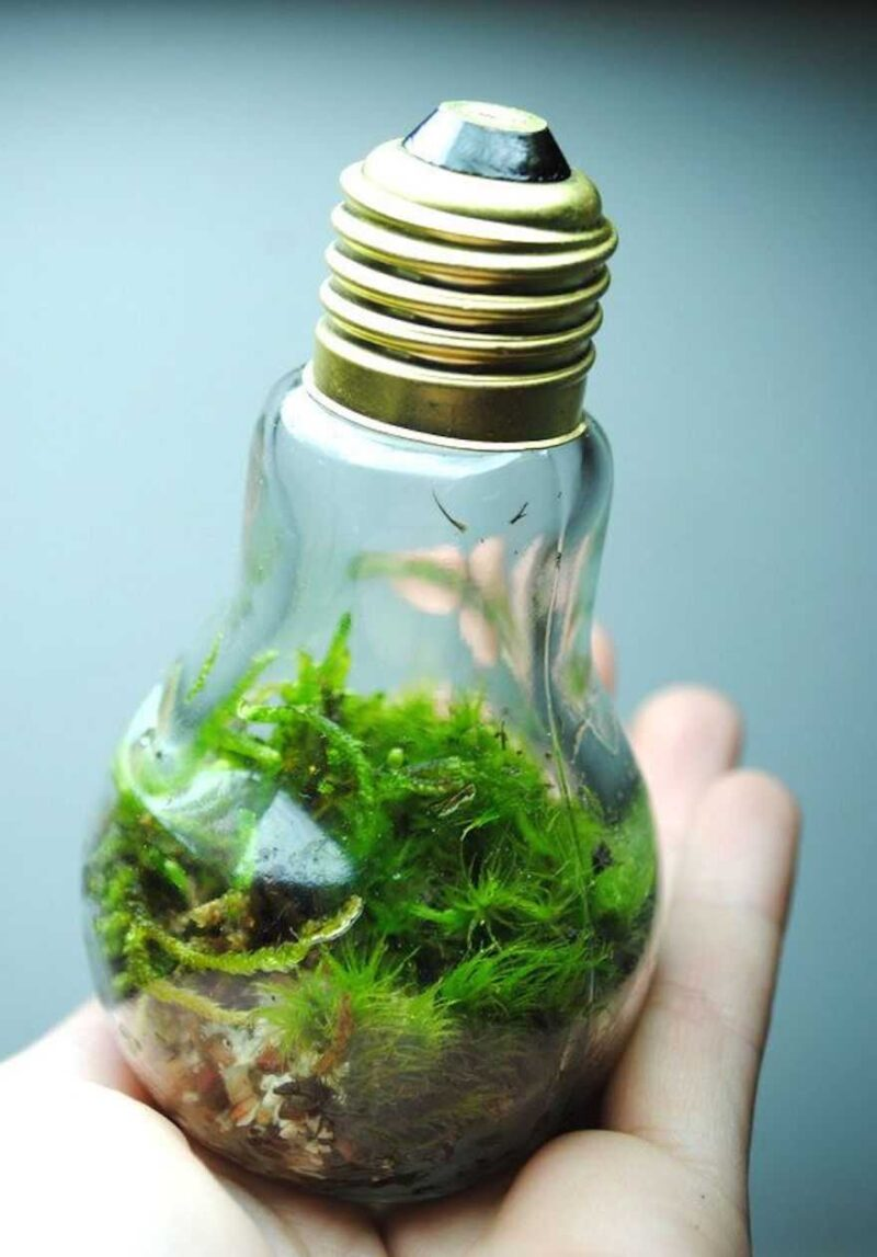 Awesome DIY Ideas For Recycling Old Light Bulbs 5