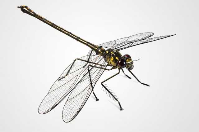 insect-sculptures-edouard-martinet-10-640x426