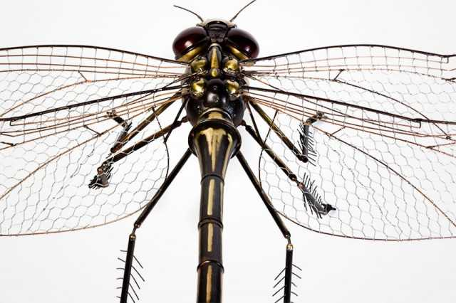 insect-sculptures-edouard-martinet-11-640x426
