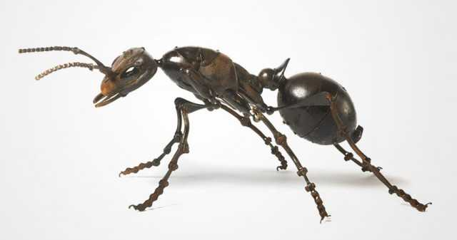 insect-sculptures-edouard-martinet-14-640x337