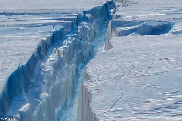 The Antarctic Glaciers