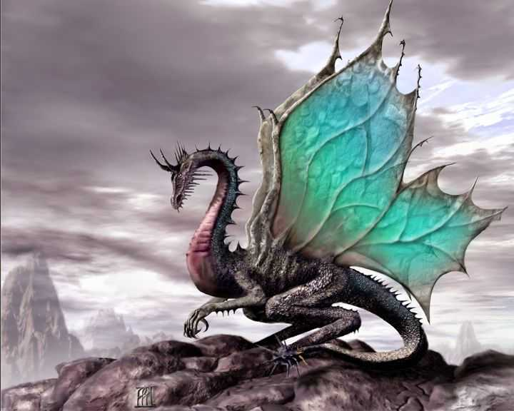 dragon this