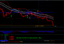 Master Forex System
