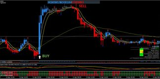 King Forex trading system