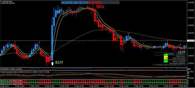 Trade the momentum forex trading system