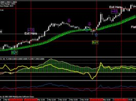Forex Trading Strategies Double CCI and RSIOMA Forex Trading System