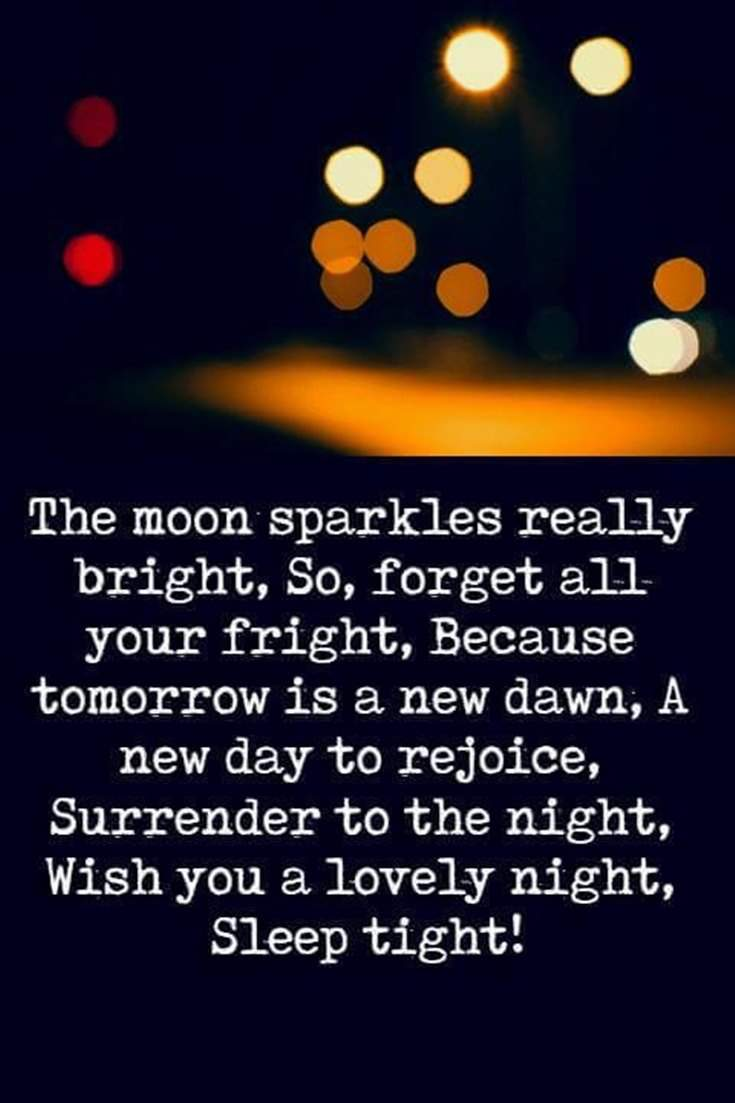 36 Good Night Quotes and Good Night Images 11