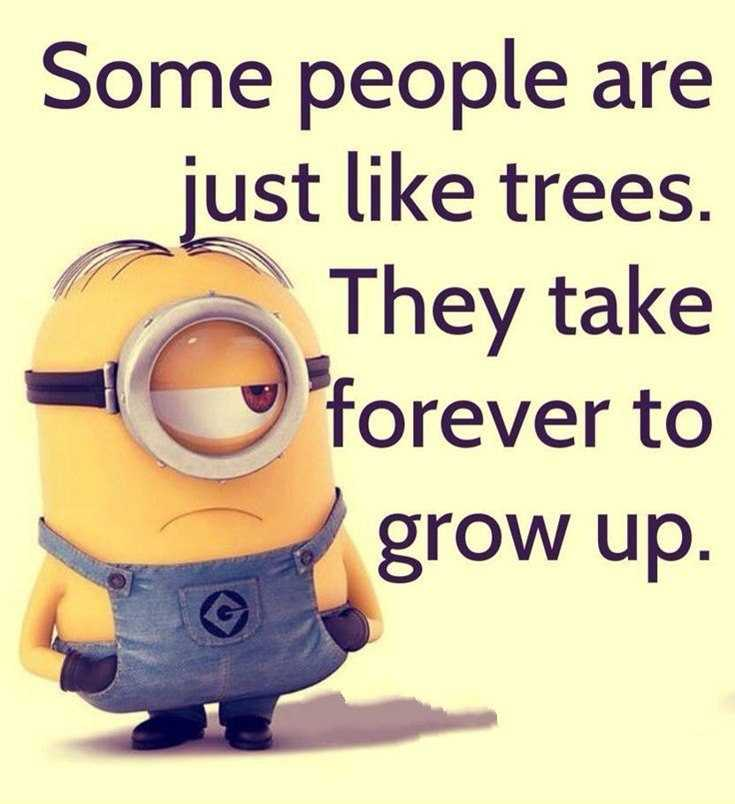 45 Funny Minions Quotes and Pics 1