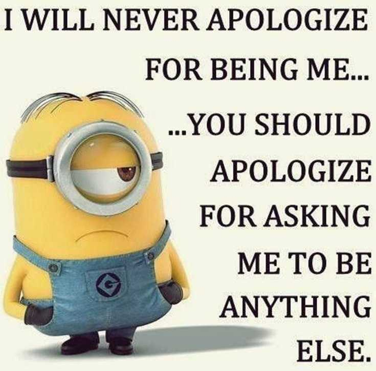 45 Funny Minions Quotes and Pics 12