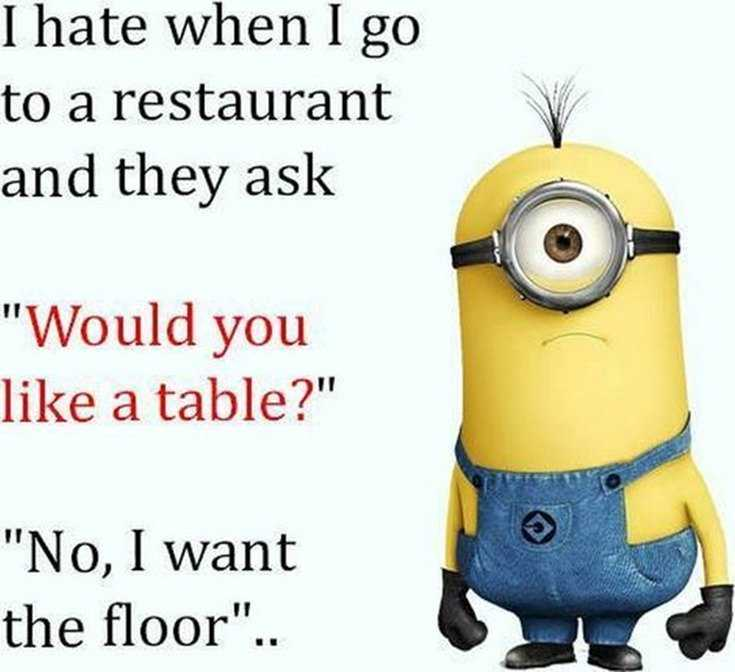 45 Funny Minions Quotes and Pics 15