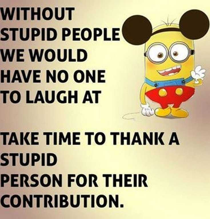 45 Funny Minions Quotes and Pics 16