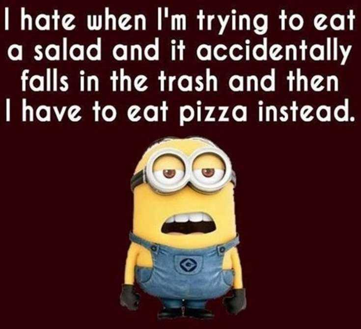 45 Funny Minions Quotes and Pics 18
