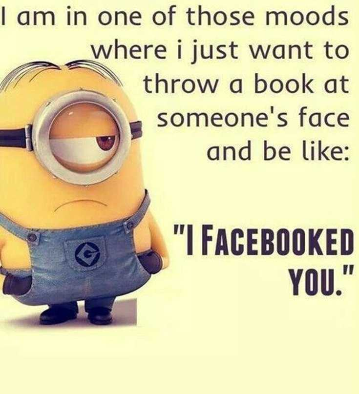 45 Funny Minions Quotes and Pics 19