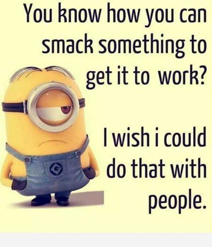 45 Funny Minions Quotes and Pics 20