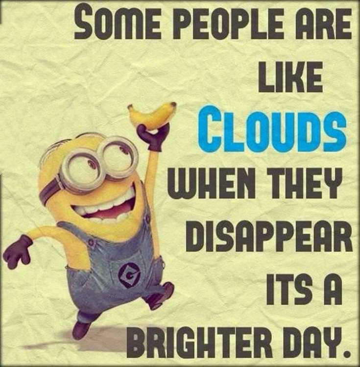 45 Funny Minions Quotes and Pics 25
