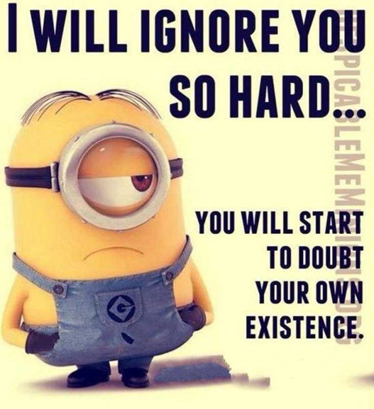45 Funny Minions Quotes and Pics 28