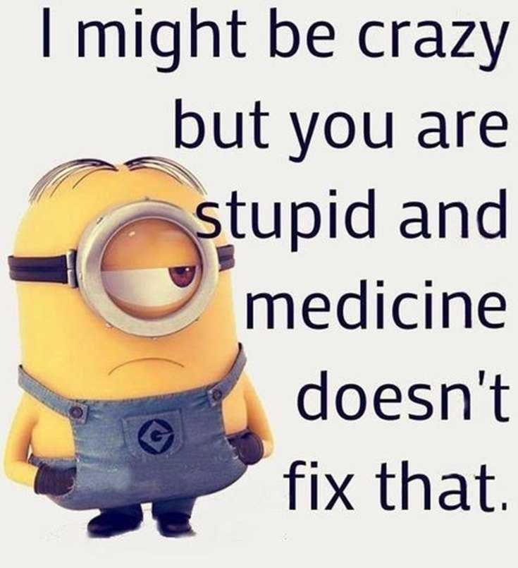 45 Funny Minions Quotes and Pics 31