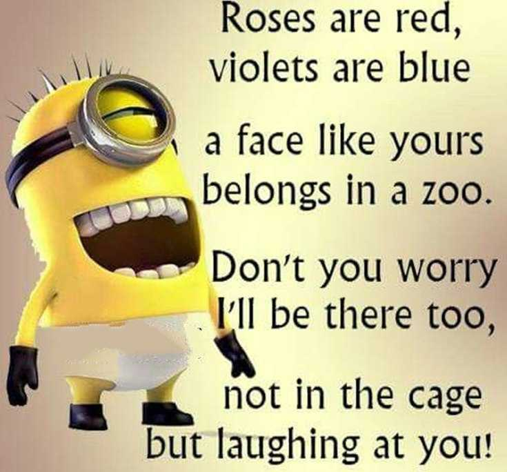 45 Funny Minions Quotes and Pics 35