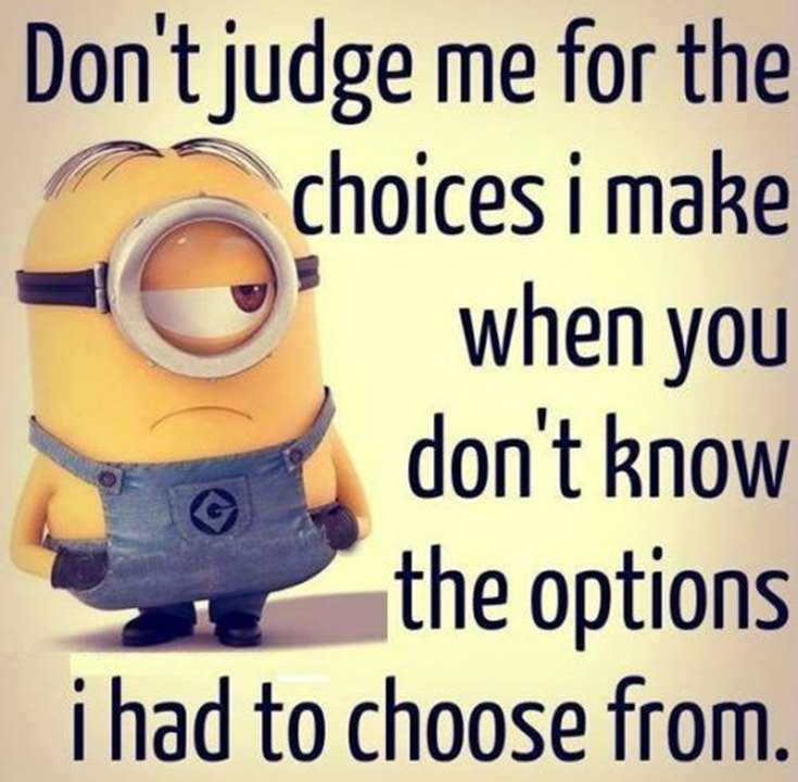 45 Funny Minions Quotes and Pics 37