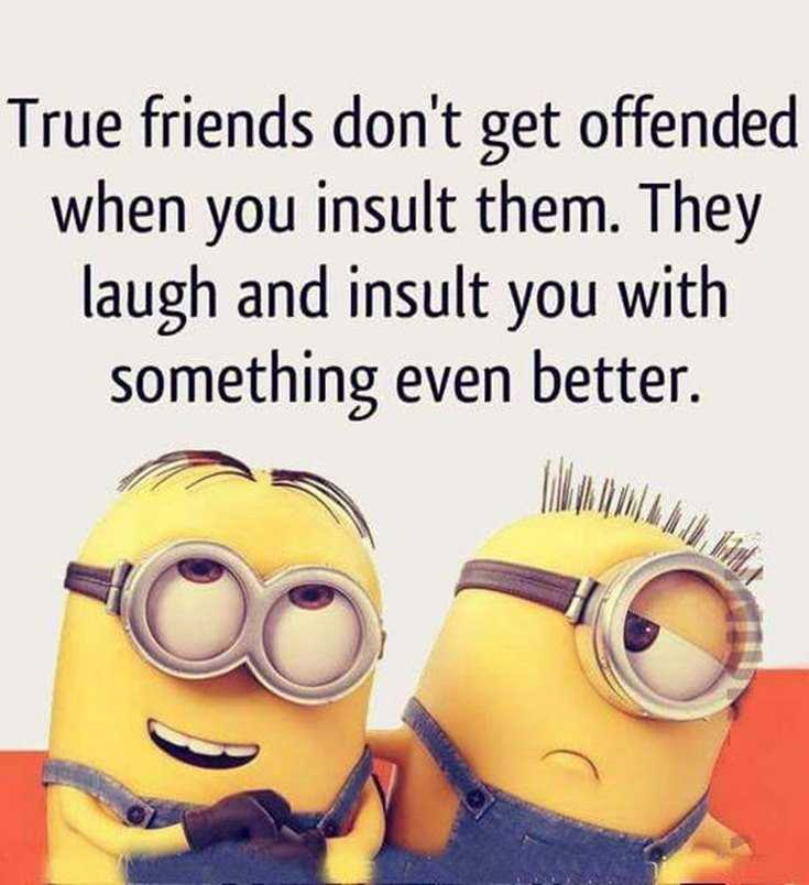 45 Funny Minions Quotes and Pics 4