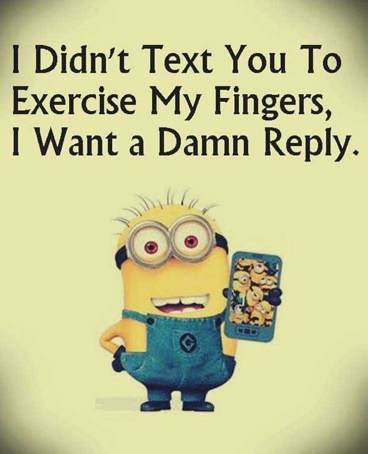 45 Funny Minions Quotes and Pics 40