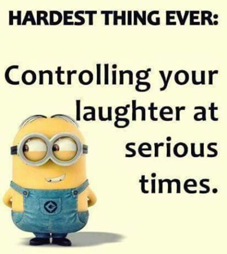 45 Funny Minions Quotes and Pics 41