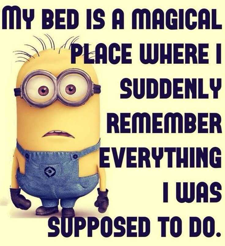 45 Funny Minions Quotes and Pics 42
