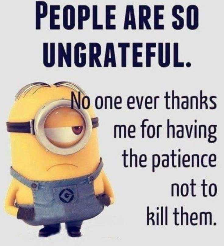 45 Funny Minions Quotes and Pics 45
