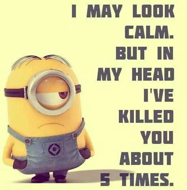 45 Funny Minions Quotes and Pics 5
