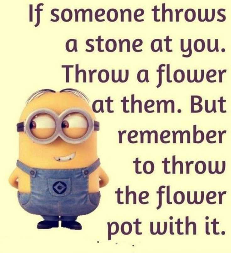 45 Funny Minions Quotes and Pics 6