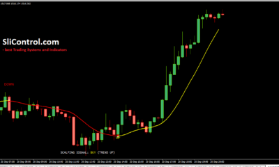 100 Pips Today Scalper