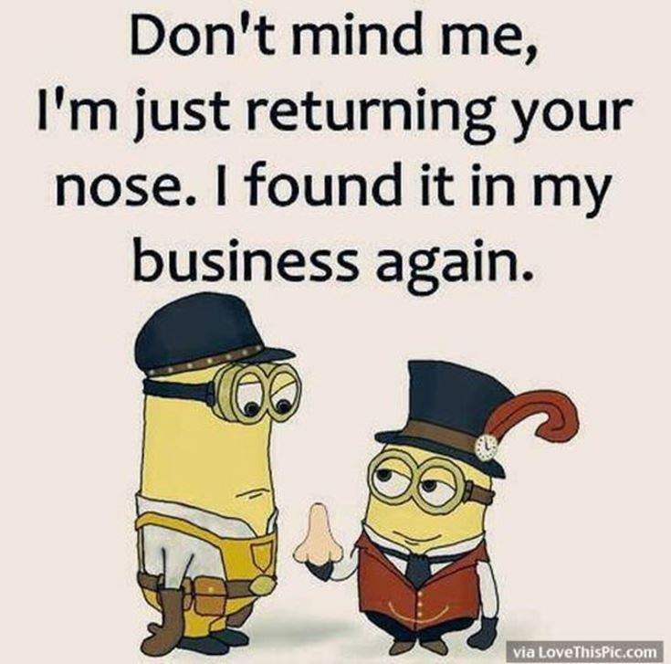 Funny Minions Quotes of the Week 13
