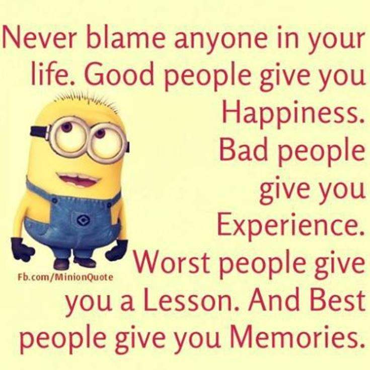 Funny Minions Quotes of the Week 14