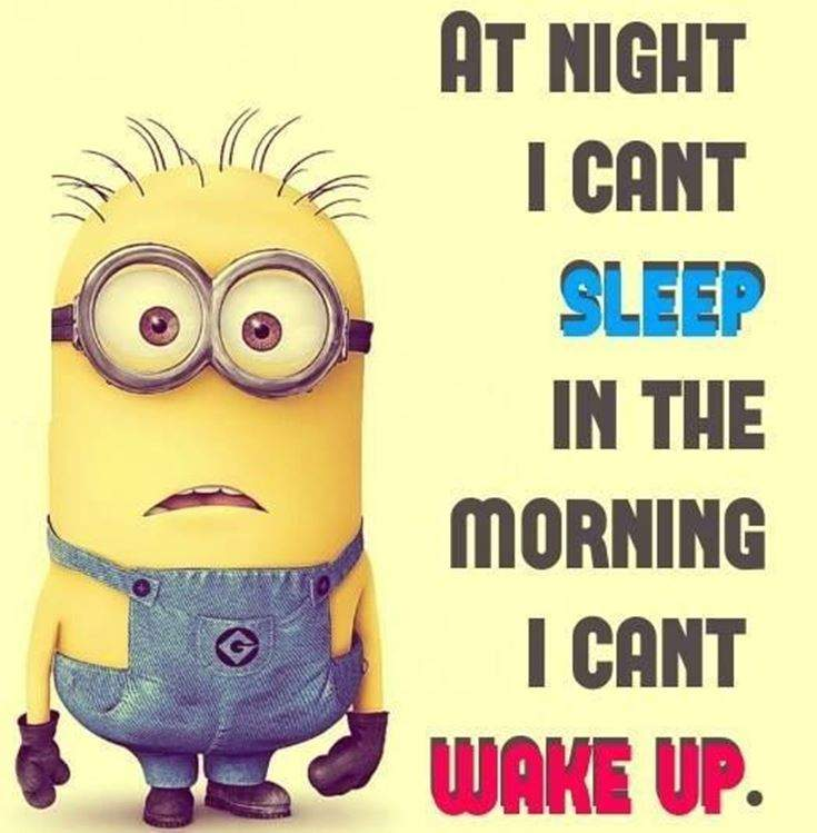 Funny Minions Quotes of the Week 18