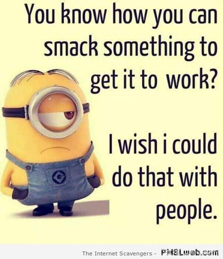 Funny Minions Quotes of the Week 29
