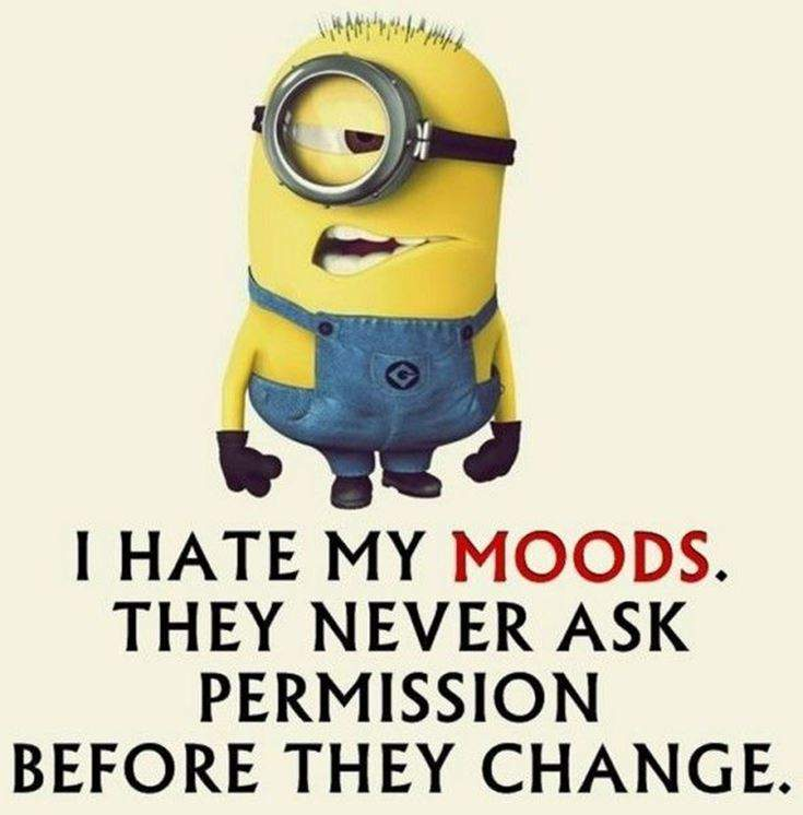 Funny Minions Quotes of the Week 3