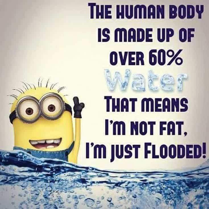Funny Minions Quotes of the Week 31