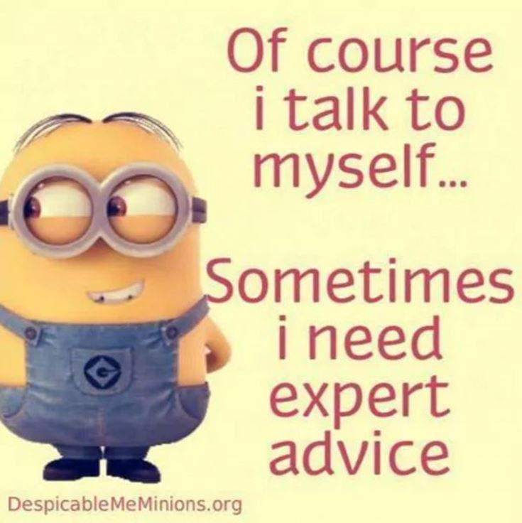 Funny Minions Quotes of the Week 35