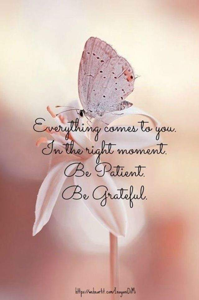 Motivational Quotes to make it an Awesome day #be patient