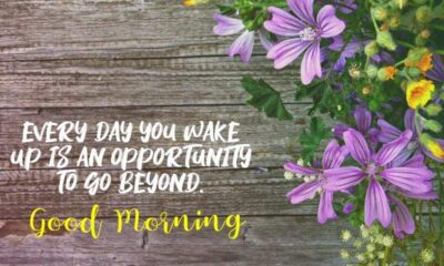good morning messages wishes quotes