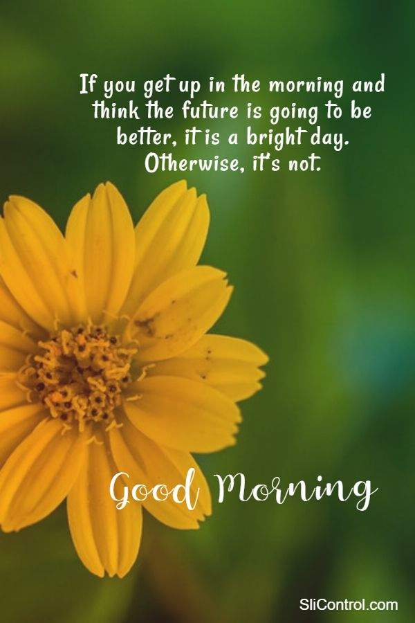 good morning messages wishes quotes with images and day out