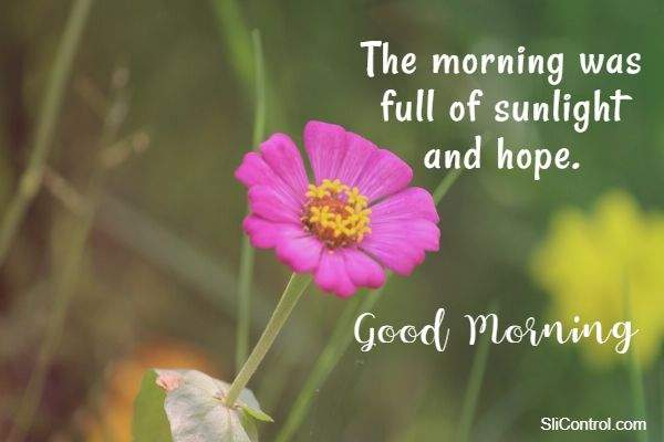 good morning messages wishes quotes with images and hope