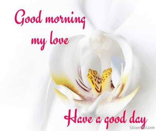 good morning wishes my love good morning love messages 10