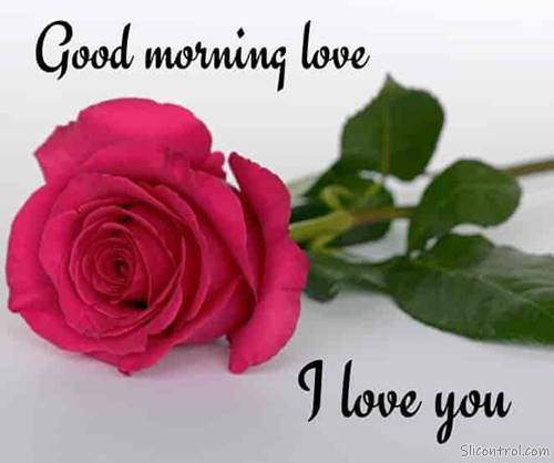 good morning wishes my love good morning love messages 23