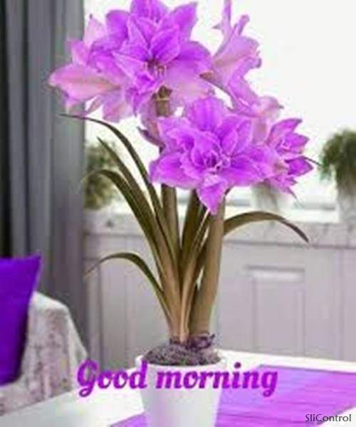 Good Morning Wishes With Blessings 16