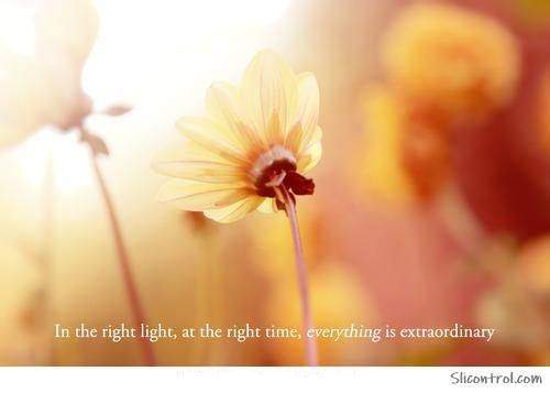 Inspiring Light Quotes On Lighting Images 11