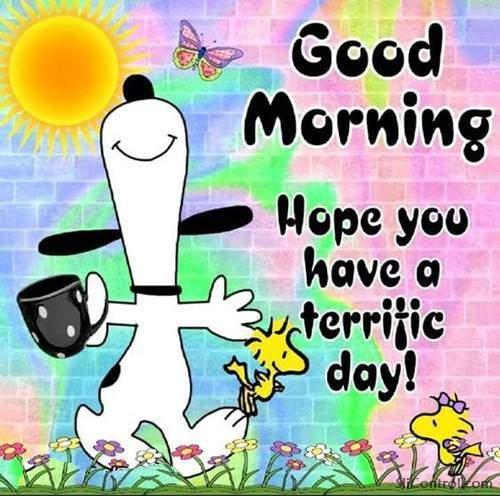 funny fridaygood morning