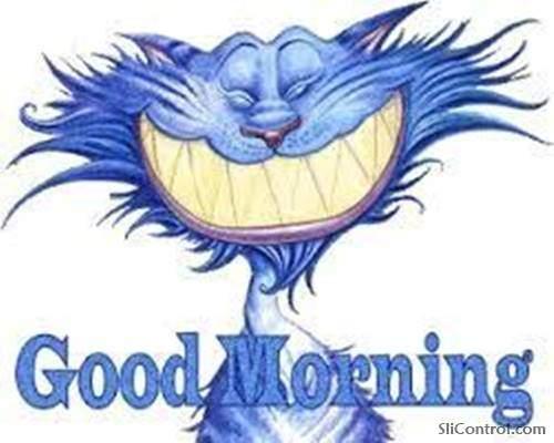 funny good morning gif